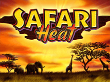 В казино Вулкан Safari Heat